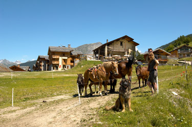 Pony trekking, 100m from chalet